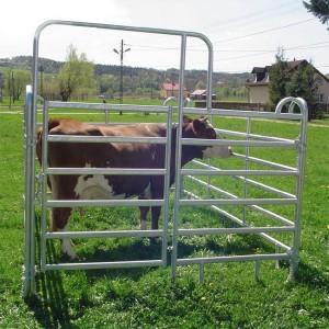 Horse-Fence (22)